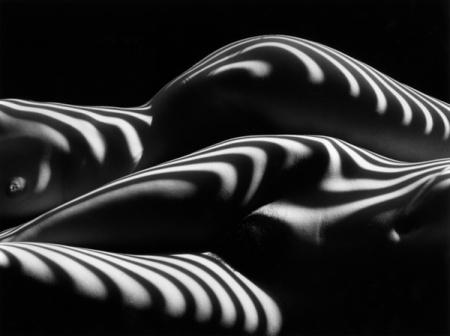 Nudo Zebrato, New York, 2007 ©Lucien Clergue